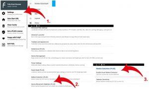 fully kiosk browser motion dectection